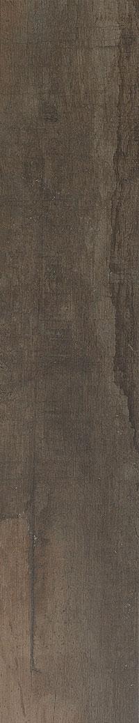 caesar-revive-Cocoa-20x100 (1)
